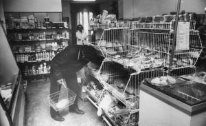 img1810 PSS Społem Świdnik sklep przy piekarni fot. Brożek